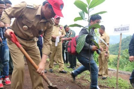 Walikota GSVL Ikut Tanam Pohon  di  Bulan Menanam Nasional 2016