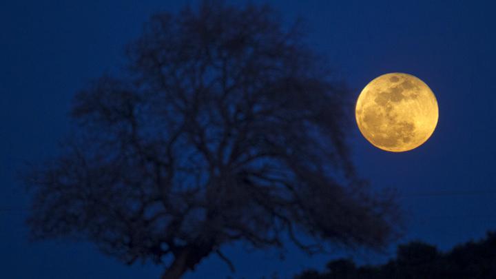 Super Blood Moon 21 Januari Tak Terjadi di Langit Indonesia