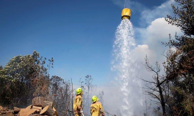 Angin Kencang Terus Picu Kebakaran Hutan di Selandia Baru, 3.000 Warga Dievakuasi
