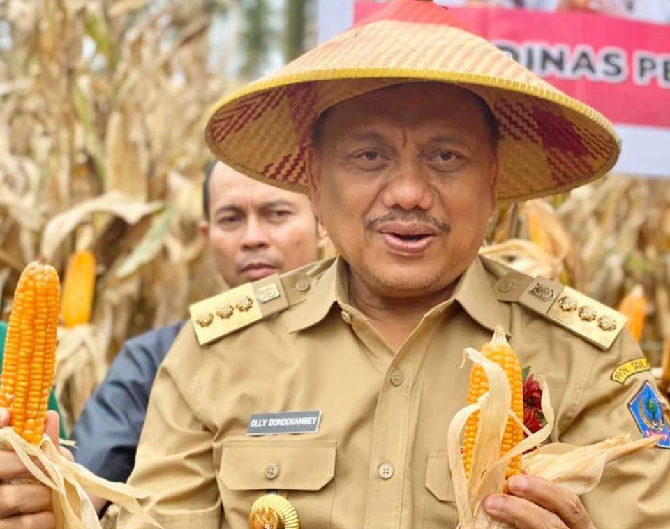 Gubernur OD Panen Jagung di Minut