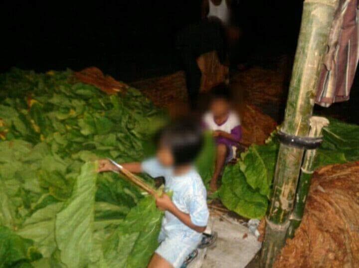 Negara Harus Peduli Pada Pekerja Anak