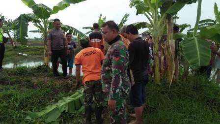 Heboh Penemuan Mayat Dalam Kolam Lele,  Babinsa Koramil Juwana  Bersama  Polsek  dan Warga Langsung Evakuasi